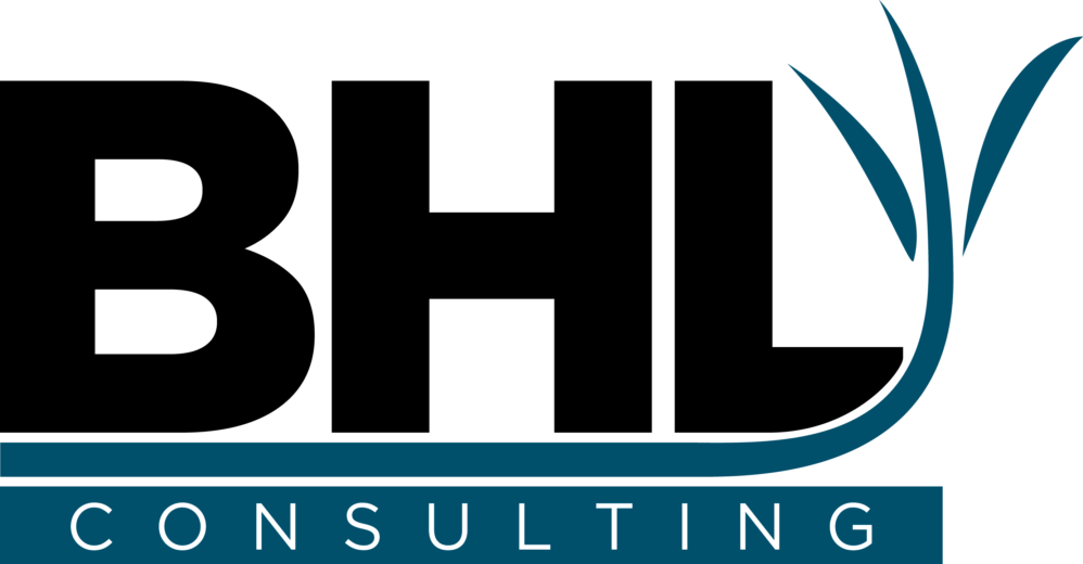 BHL Consulting